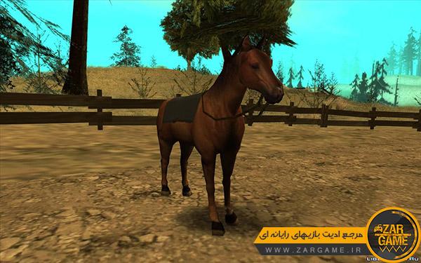 دانلود مود اسب سواری برای بازی GTA San Andreas